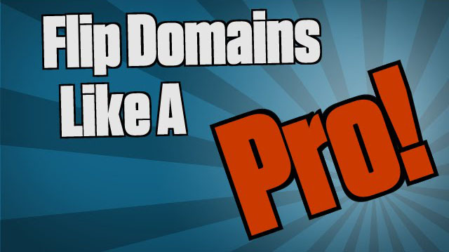 Free Domain Flipping Guide